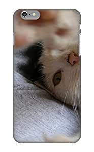 New PC Hard Case Premium Iphone 6 Plus Skin Case Cover(Animal Cat) For Christmas Gift by ruishername