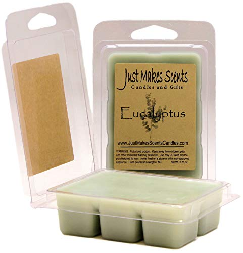 Just Makes Scents 2 Pack - Eucalyptus Scented Soy Wax Melts | Long Lasting Fragrance Cubes | Hand Poured in The USA Candles & - Soy Wax Eucalyptus Scented