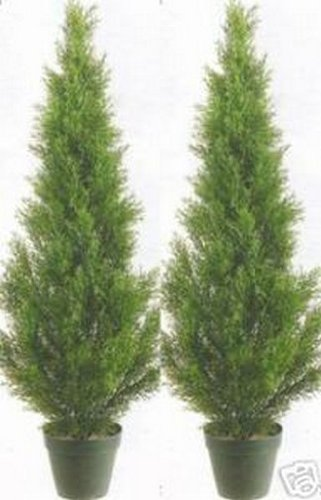 (Two 3 Foot Artificial Cedar Topiary Trees Potted Indoor or Outdoor)