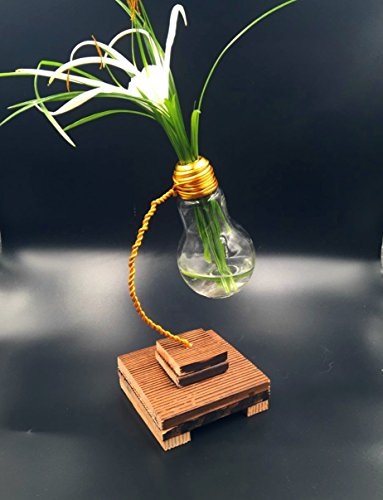Light bulb vase Rustic Vase, Upcycled present, Hand made vase, light bulb and Wood vase, Eco friendly gift, Eco friendly vase, Upcycled light bulb vase, Housewarming Gift