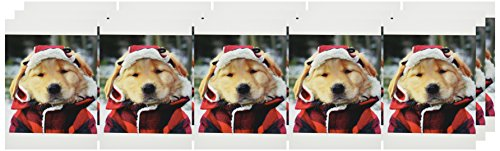 Nouvelles Images Holiday Boxed Note Card Set, Golden Retriever Greetings (XDB 451) Photo #3