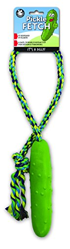 Pet Qwerks Pickle Fetch Large by Pet Qwerks