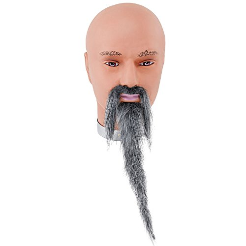 Bristol Novelty MB080 Wizard Beard and Moustache Grey, One Size ()