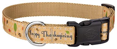 Country Brook DesignDeluxe Happy Thanksgiving Ribbon Dog Collar - Medium