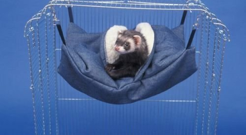 Sheppard & Greene Ferret Cage Bed Hammock Sleep Sack (Blue)