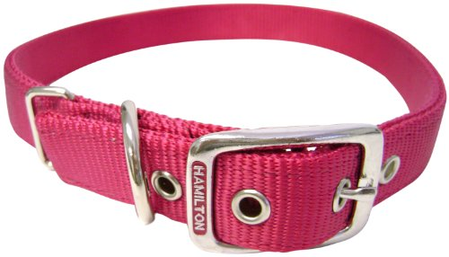 Hamilton Double Thick Nylon Deluxe Dog Collar, 1-Inch by 22-Inch, Raspberry