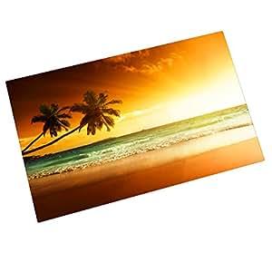 Verano playa hermosa puesta de sol entrada mats piso alfombra interior/exteriores/puerta delantera/alfombrilla de baño de goma antideslizante Felpudo (23,6x 15,7W)
