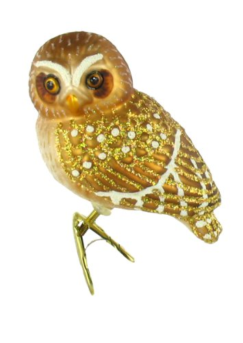 Old World Christmas Pygmy Owl Glass Blown Ornament