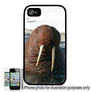 Bull Walrus Photo Apple iPhone 4 4S Case Cover Black