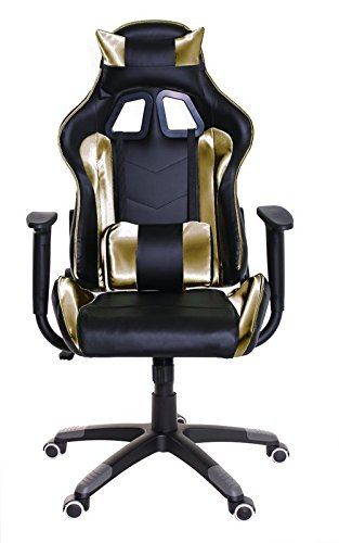 41I%2BpjHaz1L - Adjustable-Reclining-Racing-Gaming-Chair-with-Backrest-Removable-Headrest-Pillow-and-Lumbar-Cushion-Free-Ebook-BlackGolden