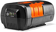 Remington RM4130 40V MAX (36V Nominal) 2.5AH, 90 WH Battery