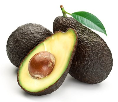 Cold Hardy Avocado Tree - up to 3 ft. Tall Trees, Ready to Give Fruit the 1st Year - (Mexicola Grande) - Get Delicious Avocados Year Round from This Fruit Tree by Brighter Blooms Nursery by Brighter Blooms