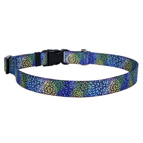 Yellow Dog Design Flower Works Blue Dog Collar Fits Neck 14 to 20