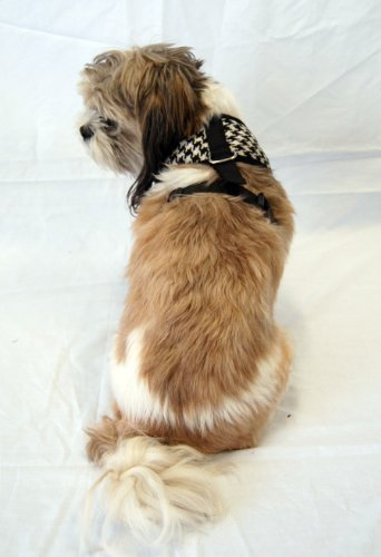 Anima Black and White Houndstooth Harness, Small