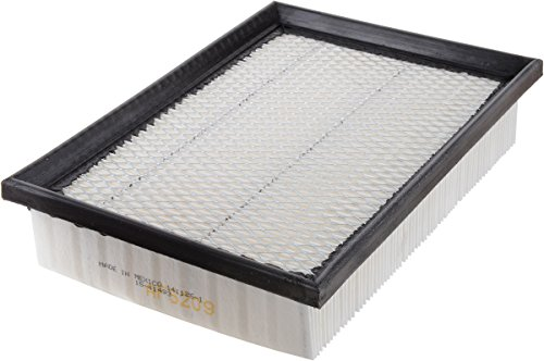 Luber-finer AF5209 Heavy Duty Air Filter