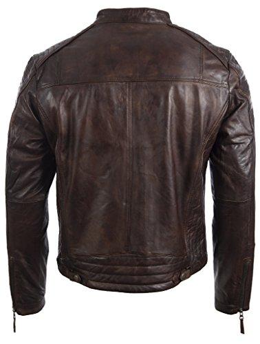 E Da Uomo Giacca Con Pelle Motociclista Aviatrix Vera vo3w Spalla Laterale Disegno In Marrone Nevada qwvRWf