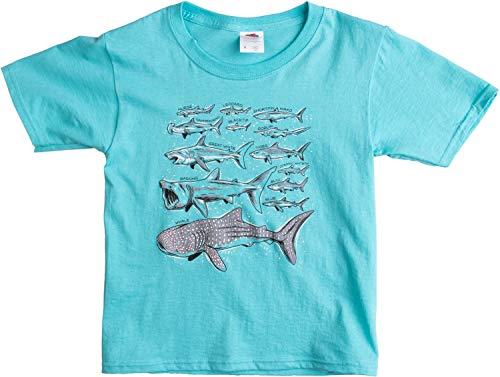 (Shark Species | Cool Ocean Fan Boy Girl Birthday Party Swim Shirt T-Shirt - (Youth,XS) Scuba Blue)