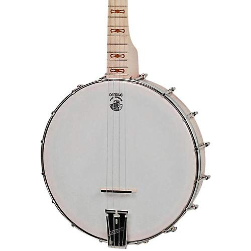 Goodtime 17-Fret Tenor 4-String Banjo