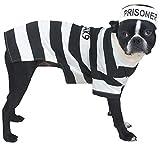 Casual Canine Prison Pooch Costume, Small