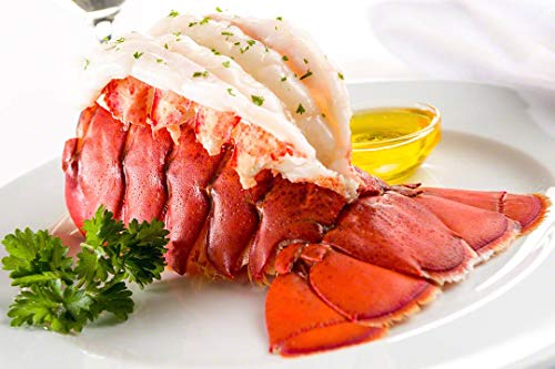Maine Lobster Now - Maine Lobster Tails 12oz - 14oz (4 Tails) (Best Maine Lobster Delivery)