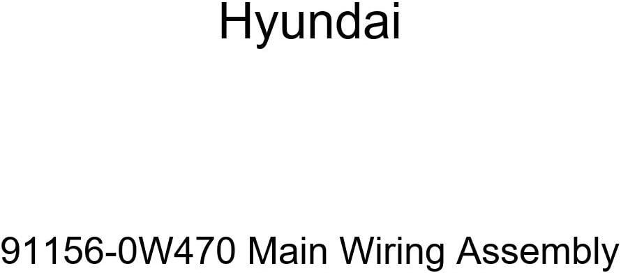 Genuine Hyundai 91156-0W470 Main Wiring Assembly