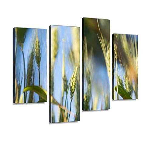 (Golden Wheat Field and Sunny Day Canvas Wall Art Hanging Paintings Modern Artwork Abstract Picture Prints Home Decoration Gift Unique Designed Framed 4 Panel)
