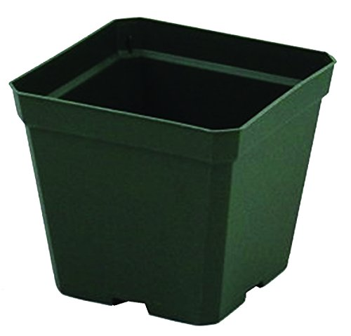 - Greenhouse Pots - 4 inch Square - 3 1/2 inch Deep Pots - Green - Plastic - Case of 846 by Growers Solution