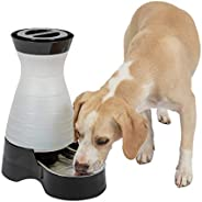 PetSafe Healthy Pet Water Station, Gravity Dog and Cat Water System with Stainless Steel Bowl, Medium, 128 oz.