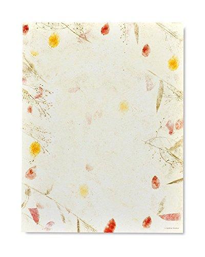 Gartner Studios Pressed Floral Stationery, 100 count ()