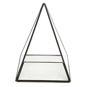 Modern Glass Pyramid Tabletop Succulent Plant Terrarium Box / Air Plant & Cacti Holder Case - MyGift