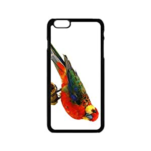 Rosella Hight Quality Plastic Case for Iphone 6