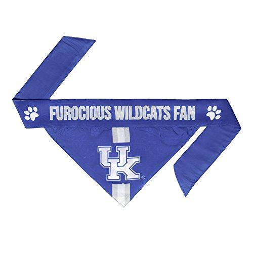 NCAA Kentucky Wildcats Pet Bandanna, Small