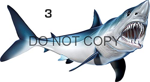 """Mako Shark Beautiful Fish Decal for Your Boat, Vehicle, Etc. Many Sizes and Styles Available 12"""" to 40"""" (Small, Position 3)"""