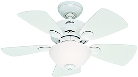 Hunter 52089 Watson 34-Inch Snow White Ceiling Fan with Five Snow White Bleached Oak Blades and a Light Kit
