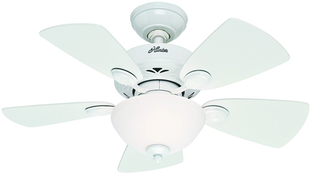 Hunter 52089 Watson 34-Inch Snow White Ceiling Fan with Five Snow White/Bleached Oak Blades and a Light Kit