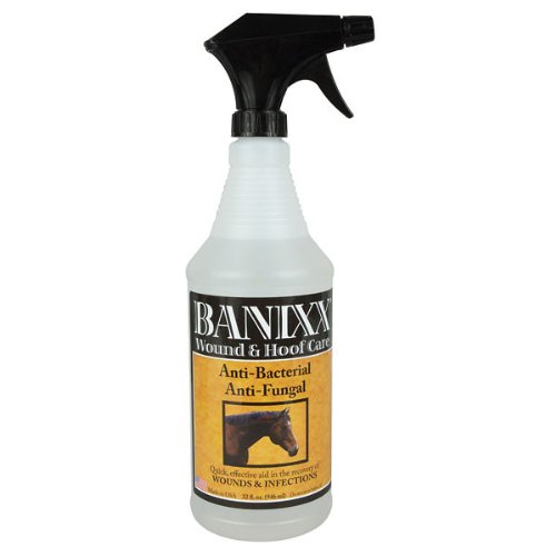 Banixx 32 Fl Oz Wound and Hoof Care Anti-bacterial Anti-fungal Quick Effective Aid in the Recovery of Wounds and Infections