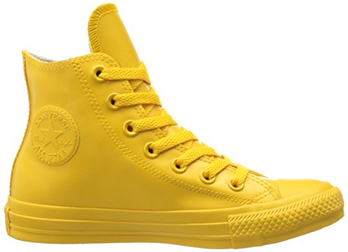 misti Taylor Adulto Honey Wild Hi Chuck Sneakers Star Converse All Shearling W4qcTwHn