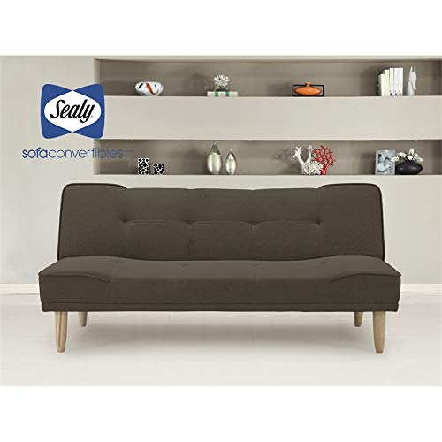 Sealy Miami Transitional Convertible Sofa in Gray