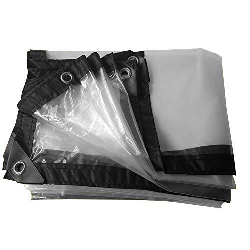 LIANGJUN Tarpaulin Waterproof Heavy Duty Polyethylene Anti-Sun Anti-Aging Corner Reinforcement Indoor Dustproof Easy to Fold ,100g/m², 23 Sizes (Color : Clear, Size : 3x3m) from LIANGJUN-pengbu
