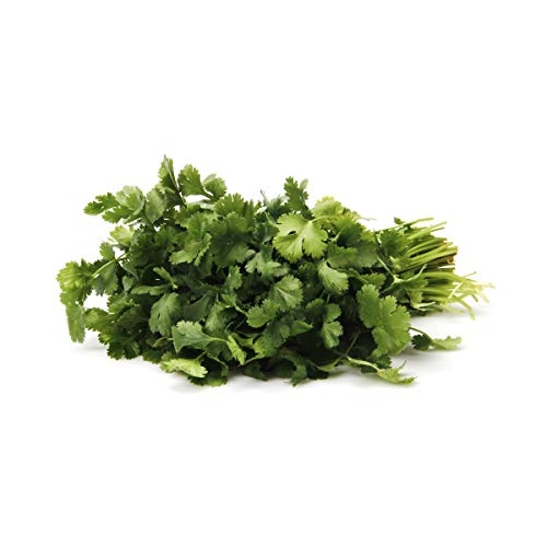 Herb Cilantro Organic, 1 Bunch