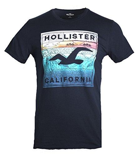 Hollister Mens Graphic T Shirt  S  Navy 229