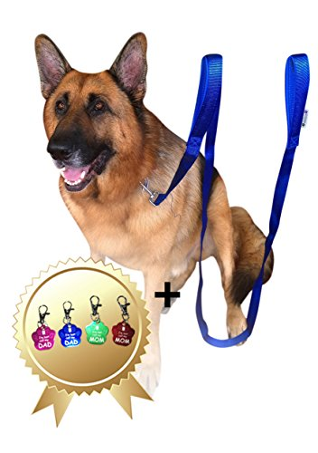 Twin Handled (2 Handles Dog Leash - 8FT 2Inch Blue Dual Handle Dog Leash - FREE Bonus Dog Tag - Dog Leashes For Large Dogs Heavy Duty - Leash For Dogs Who Pull - Dog Leash Large Heavy Duty)