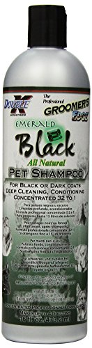 Groomers Edge Emerald Black Dog and Cat Shampoo, 16-Ounce