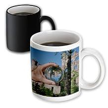 Roni Chastain Photography - Castle in crystal Ball - 11oz Magic Transforming Mug (mug_173580_3)