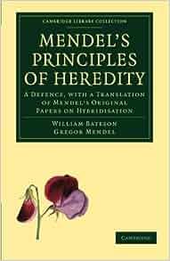 original research paper of mendel