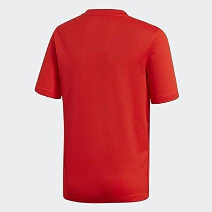 adidas Fef H JSY Y Camiseta Selección, Niños: Amazon.es: Deportes y aire libre
