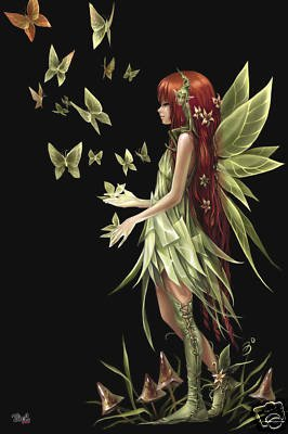 Fairies Poster Spirit Fairy Rare Hot New