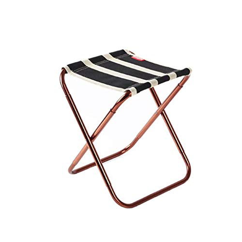 Tpingfe Portable Folding Chair Outdoor Camping Fishing Picnic Beach BBQ Stools Mini Seat (Black)