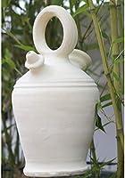 Set planta y botijo Dispensador de agua H2O, 5 lts Aprox. Sistema ...