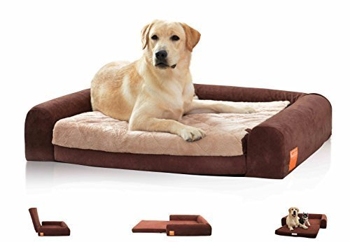 LaiFug Orthopedic Memory Foam Large Foldable Pet//Dog Sofa Bed 40x30x8, Chocolate with Durable Waterproof Liner and Removable Washable Cover M1323